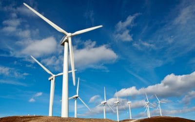 Environmental Impact Acquisition Corp (ENVI) – Undervalued Green Energy Stock